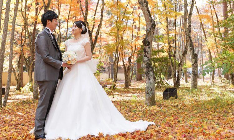 色鮮やかな紅葉の絨毯が広がる、絶景ウエディング