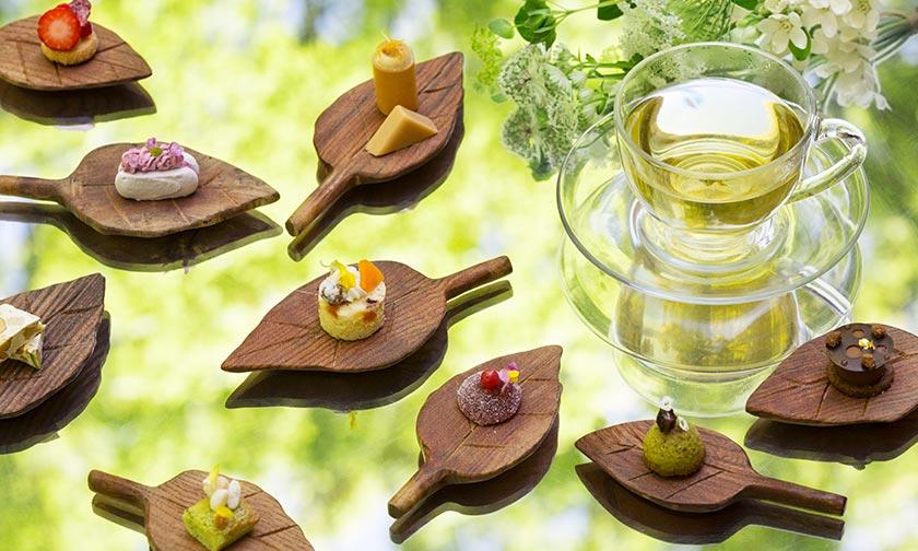 写真:10種類の小菓子「森の贈りもの」
