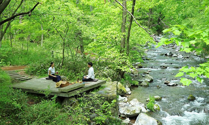 写真:ピクニックスペースは、カラマツの丘、川辺テラス、木陰のハンモック