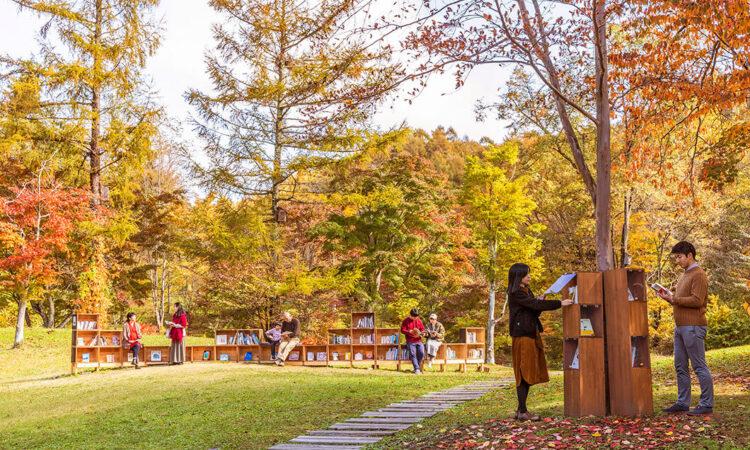 写真:紅葉図書館