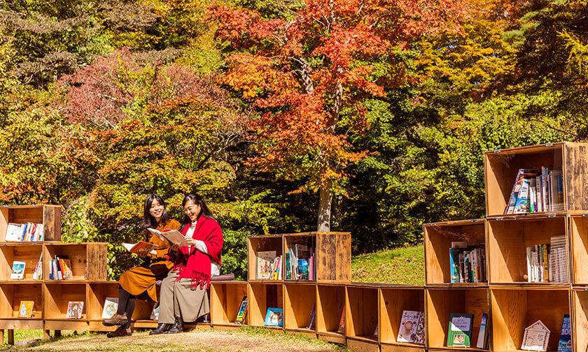 写真:王道の楽しみ方「読書」