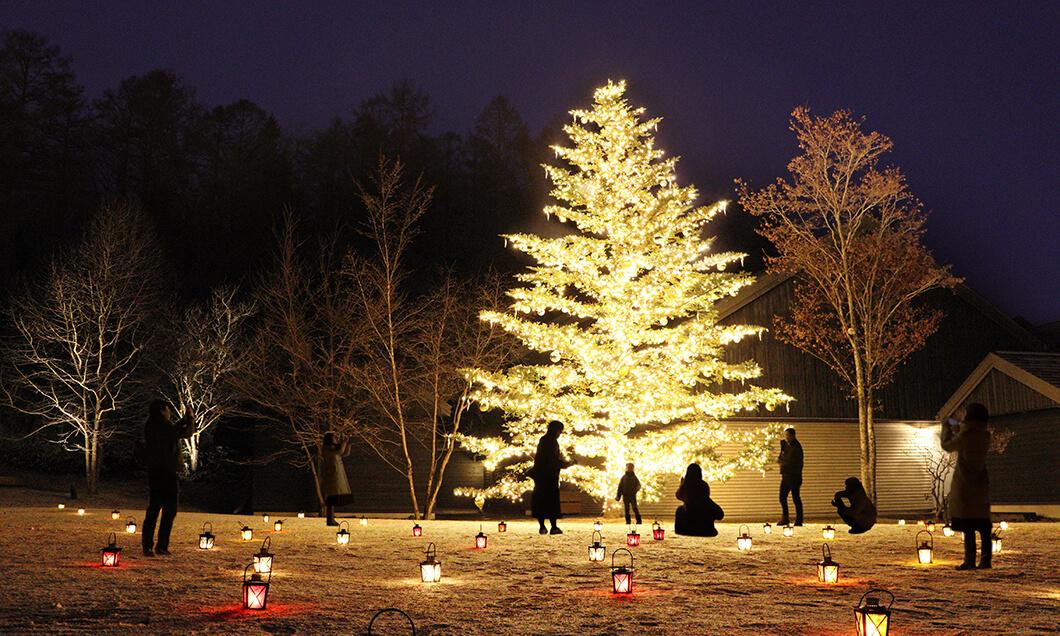 写真:軽井沢星野エリアのクリスマス2020