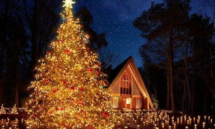 写真:軽井沢高原教会 星降る森のクリスマス 2019