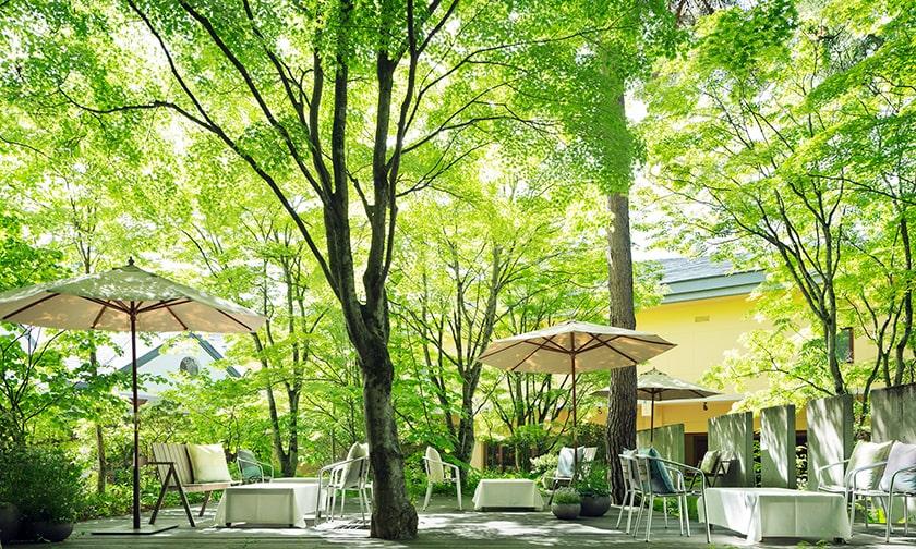 写真:「色」を楽しむデザートコース。素材は夏の太陽を浴びて輝くカラフルなフルーツ達。