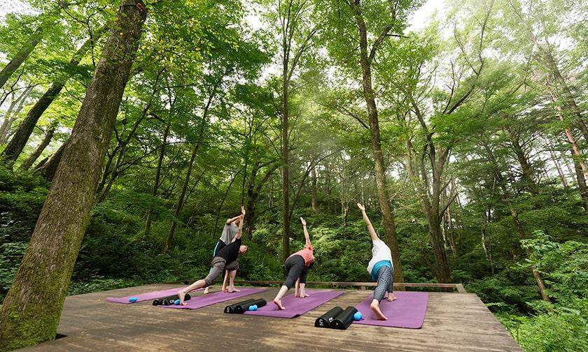 写真:新緑輝く軽井沢の森で行うフィットネス
