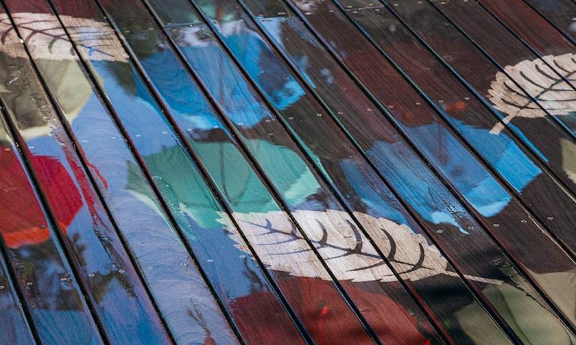 写真:雨の日だけに現れる「レイニーアート」
